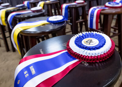 Stools with prize ribbons laying on top