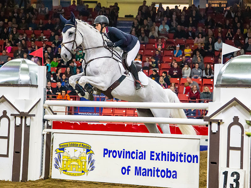 Horse and jockey competing in Show Jumping competition during the Horse Show at the Royal Manitoba Winter Fair, Brandon, Manitoba